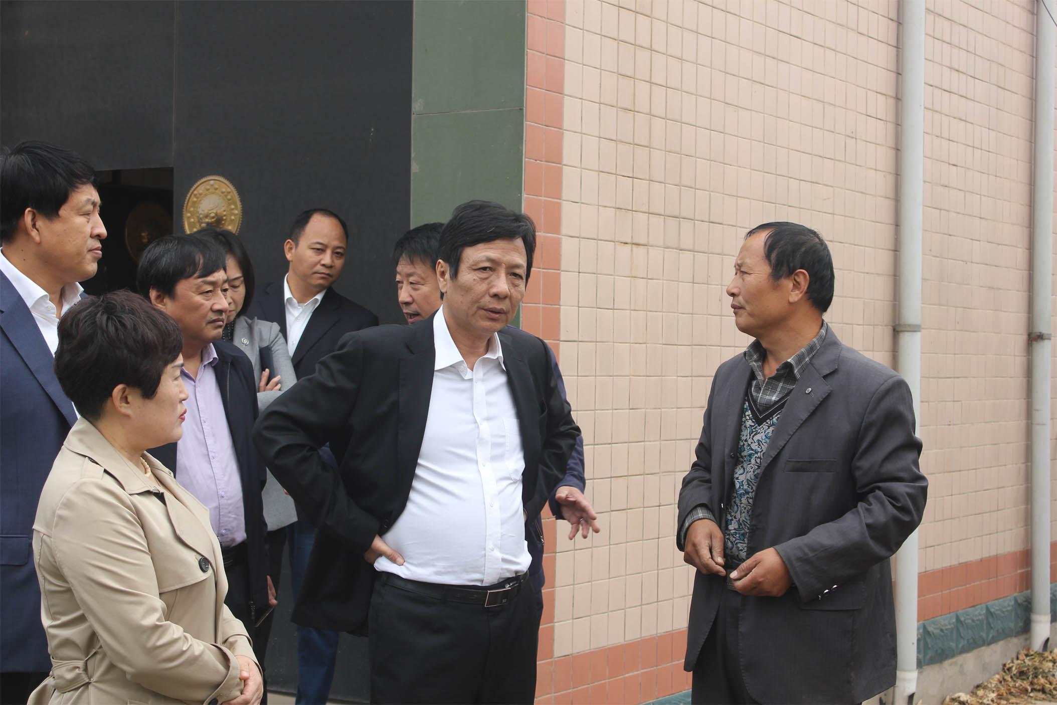 晋州市市委书记陈慧明考察淘宝彩票为什么停售了晋州市吕家庄村煤改电项目进度情况